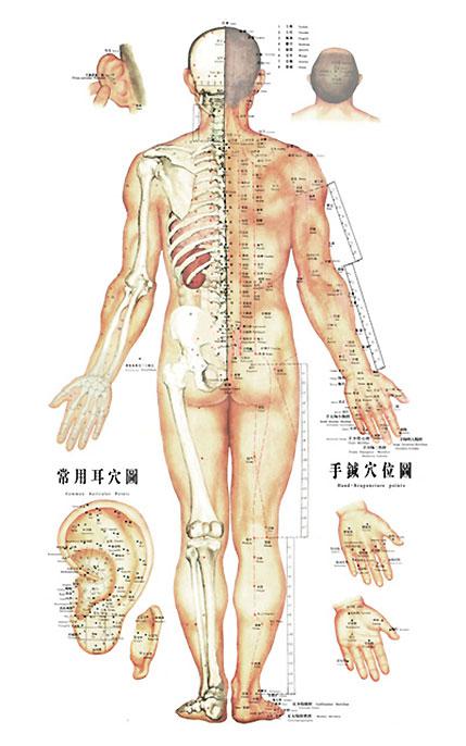 Akupunktur fyn